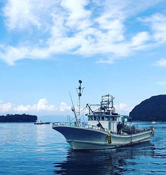 沼津は「深海魚の聖地」と呼ばれている(写真提供:青山沙織氏)